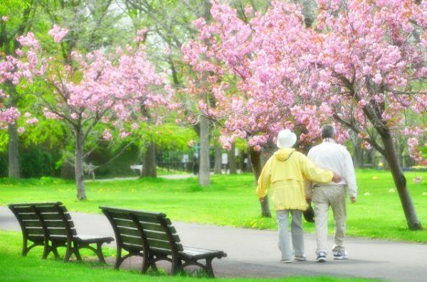 超高齢社会の現状や定義 世界との比較 日本の人口構造
