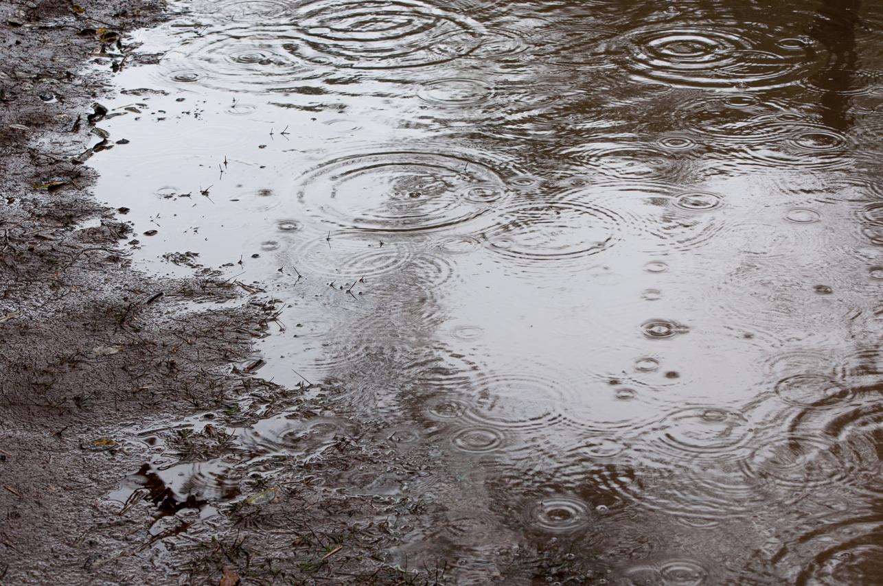 梅雨の時期はいつから?2016年予想。梅雨がないとどんな影響が?