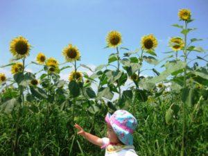 子供の日焼け後のケア 化粧水以外にもおすすめ方法