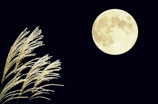 中秋の名月とは 2016年は?食べ物がだんごの由来は?