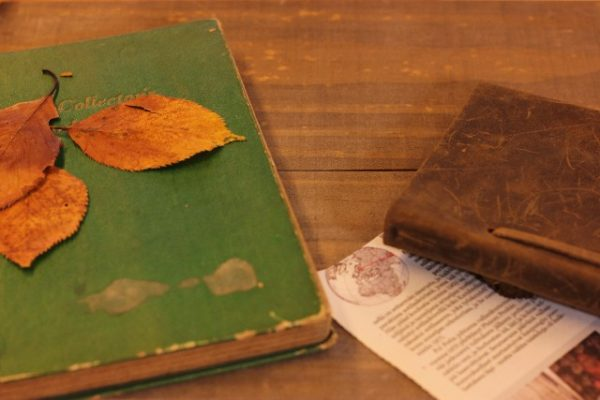 2016年秋の読書週間はいつ?期間や標語について